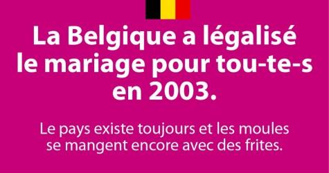 La Belgique et le mariage homosexuel - par LGP Lyon